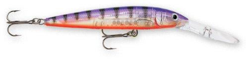 Rapala Down Deep Husky Jerk 10 Fishing lure, 4-Inch, Glass Purple (Lures Perch)