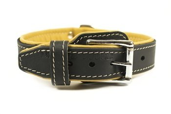 Dean & Tyler  Italian Tailor Black Dog Collar with Brown Padding and Chrome Plated Steel Hardware, Size 18-Inch by 1-1 4-Inch, Fits Neck 16-Inch to 20-Inch