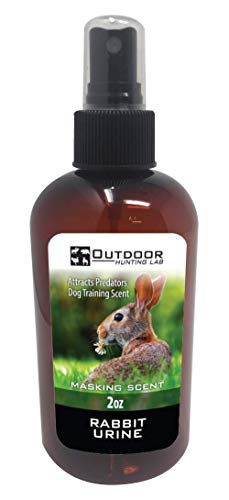 Outdoor Hunting Labs Rabbit Urine Scent - Predator Hunting Odor - Dog Training - Trapping Fox and Coyote Attractant Lure (2 Oz) (Best Dog For Hunting Rabbits)