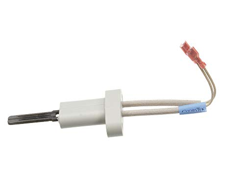 Price comparison product image Polaris Water Heater 100110899 Natural Gas Igniter Hcg - 9006