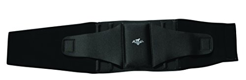 Professionals Choice Comfort Fit Low Back Support (Large, Black)