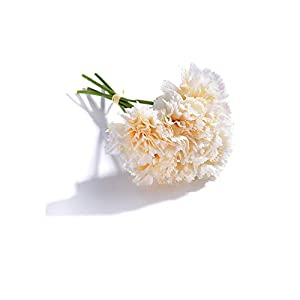 5 Heads Fresh Artificial Flower Carnation Silk Flower Fake Plant for DIY Mother's Day Flower Wedding Home Party Decoration,3 17