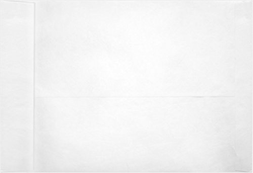 6 x 9 Open End Envelopes - 11lb. Tyvek (250 Qty) | Perfect for mailing Documents, Catalogs, Direct Mail, Promotional Material, Brochures and More | PC1101PL-250 by Envelopes.com