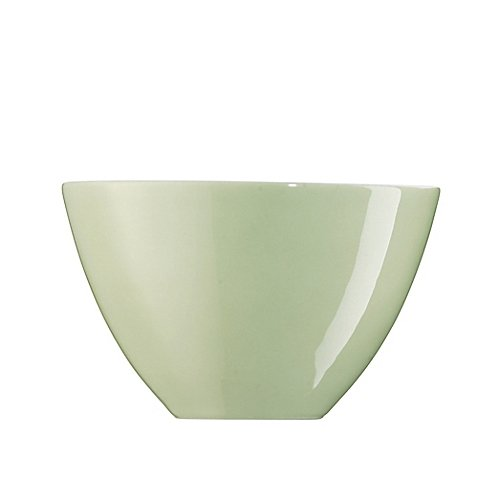 rosenthal-arzberg-profi-1025-inch-serving-bowl-in-willow
