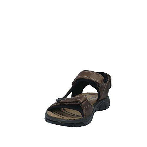 IGI Co 1130 Sandals Man Brown 42 hDUM8