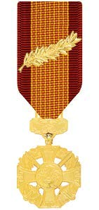 (Medals of America Vietnam Gallantry Cross with Palm Medal Miniature Anodized)