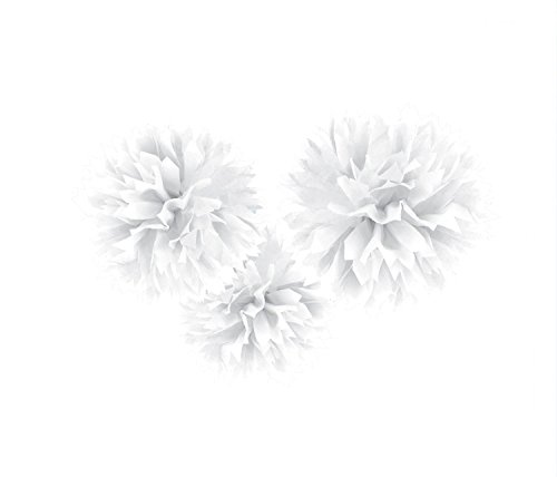 Amscan Sweet and Stylish Hanging Fluffy Balls Party