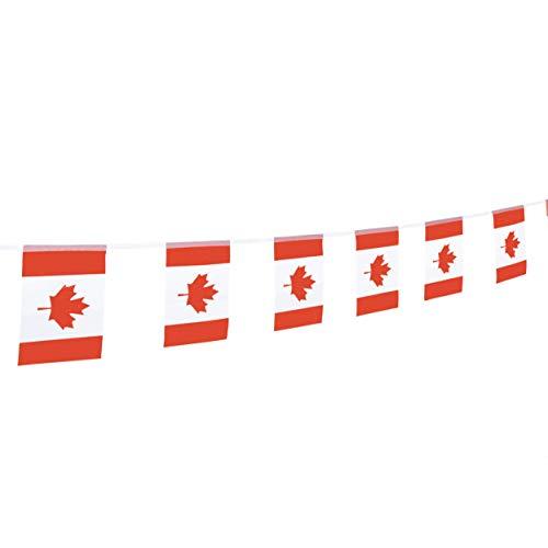 Mini Banner String - LoveVC 100 Feet Small Mini Canada Canadian Flags Banner String,Canada Day Party Decorations Supplies