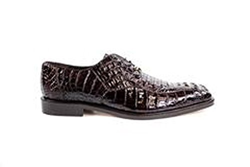 (Belvedere Chapo Genuine Hornback Crocodile Oxford Shoe 11.5 Brown)