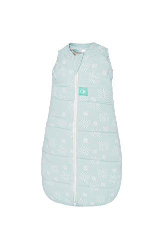 ergoPouch 2.5 Tog Swaddle and Sleep Bag, Mint