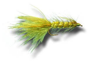 Woolly Bugger - Olive Fly Fishing Fly - Size 8 - 6 Pack