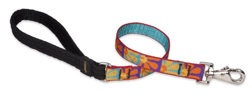 LupinePet Originals 3/4'' Crazy Daisy 2-foot Traffic Lead/Leash for Medium and Larger Dogs by LupinePet