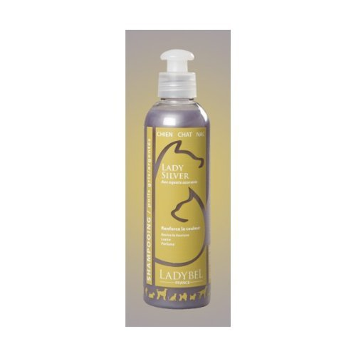 LADYBEL Lady Silver Shampooing pour Chien Gris SHASIL200 76