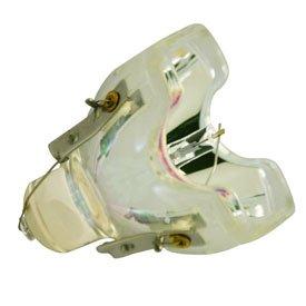 交換用電池とライトバルブ610 – 323 – 0719 – bare-lamp交換用電球 B01M0VPPR1