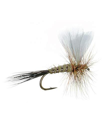 (Umpqua Colorado Green Drake Size 12 - 2 Pack)