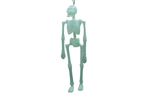 Glow In The Dark Halloween Decorations (16 Inch Plastic Glow In The Dark Hanging Halloween Skeletons Scary (Pack of 2))