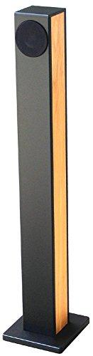The Sampan Fullrangeミニタワー、ブラックとレッドBirch Real Wood Veneer各 B01N32Z76I