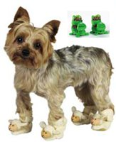X-small Doggie Slippers - 1
