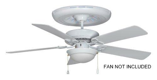 Healthy Fan Air Purifying Medallion