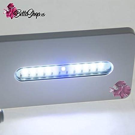 ACUARIOS con LUZ LED DE 18,4 LITROS ACUARIO mas PANTALLA LUZ LED ACUARIO: Amazon.es: Hogar