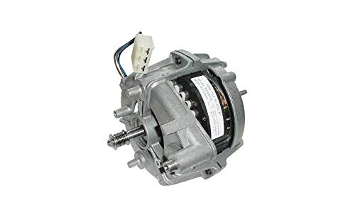 Motor Msl 12005c25 para secadora Fagor: Amazon.es: Grandes ...