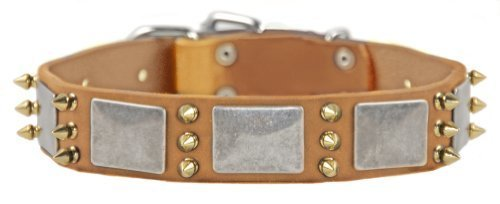 Dean and Tyler  DEVILISH DELLA , Dog Collar with Nickel Plates and Brass Spikes Tan Size 66cm by 4cm Fits Neck 61cm to 71cm