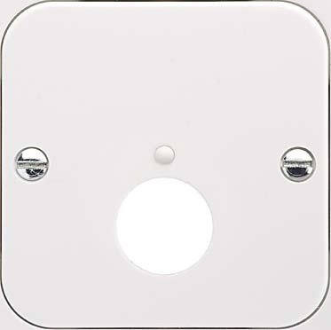 Pin Din Wall Plate - ELSO Central Plate for DIN Steckdose Fashion reinweiß 203404