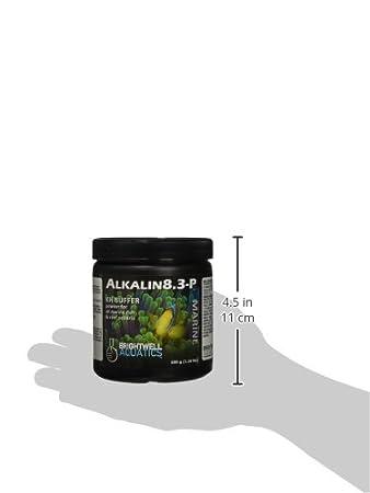 Amazon.com: Brightwell Aquatics abaalkp500 – Alkalin 8.3-p ...
