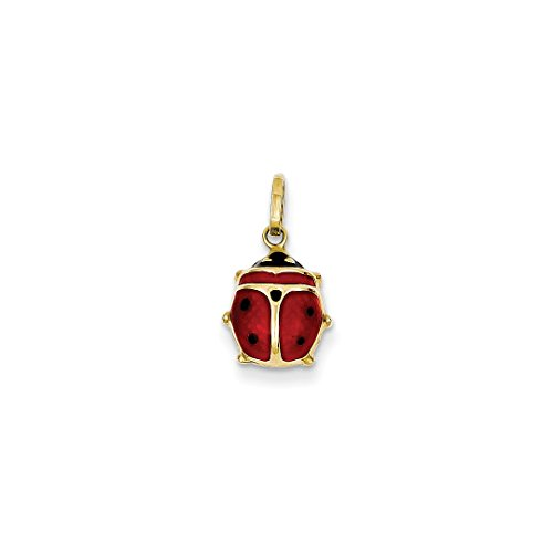 ICE CARATS 14k Yellow Gold Red Enameled Ladybug Pendant Charm Necklace Insect Fine Jewelry Ideal Mothers Day Gifts For Mom Women Gift Set From Heart (14k Yellow Gold Ladybug)