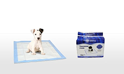 AKC-Training-Pads-100-Pack