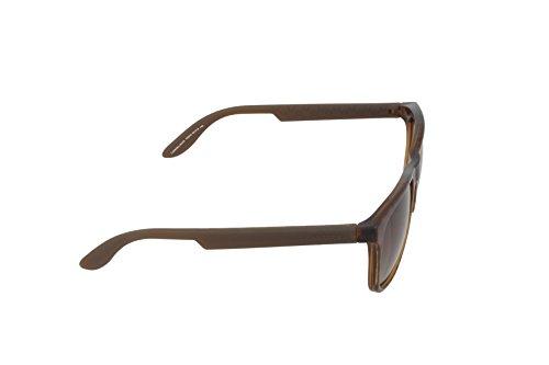 Brwn 5025 CARRERA Hvna S Carrera Sonnenbrille S6Oq00