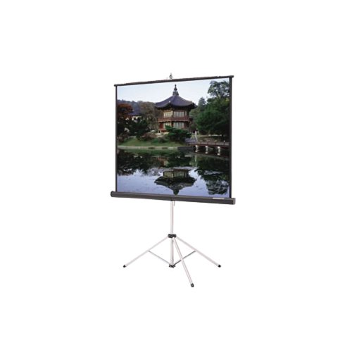 Matte White Gray Carpeted Picture King w/ Keystone Eliminator - Video Format Size: 72