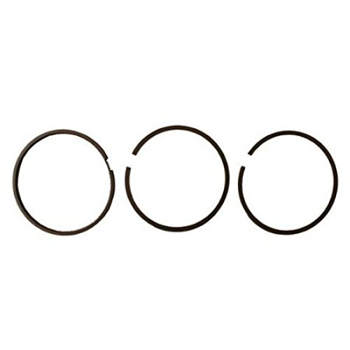 Briggs & Stratton 299690 Standard Piston Ring Set Genuine Original Equipment Manufacturer (OEM) Part
