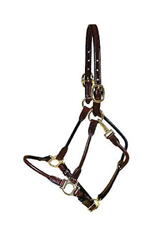Tory Leather Arabian Halter with Rolled Nose, Cheeks Throat - Black, ARAB HORSE