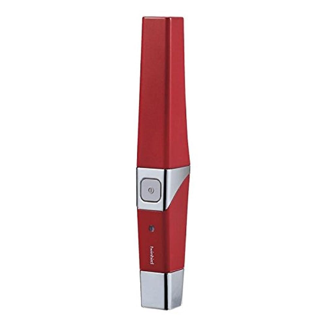 汚れた財布極小ツインバード 音波振動式USB充電歯ブラシ ACアダプター付 レッド BD-2757R