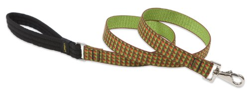 LupinePet 1-Inch Copper Canyon 6-Foot Dog Lead