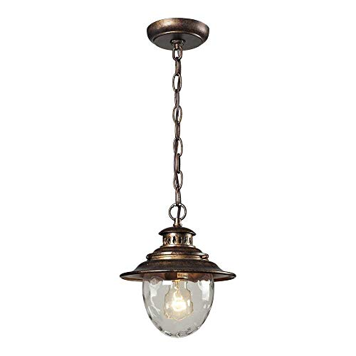 Elk 45031/1 Searsport 1-Light Outdoor Pendant with Water Glass Diffuser, 8 by 10-Inch, Regal Bronze Finish