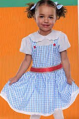 Toddler Costume - Storybook Darling (12-24 (Target Costumes For Toddlers)
