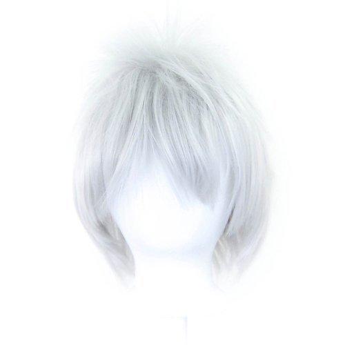 Sora - Silver Gray Wig 13'' Spiky Short Cut by Purple Plum Inc.