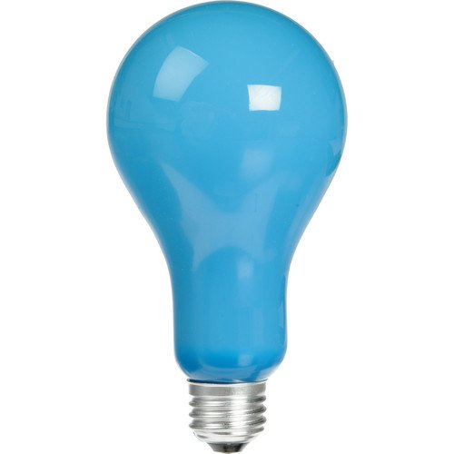 - Camson EBW Blue Lamp 120v/500w Photoflood Photography Lighting Bulb Inside Frosted
