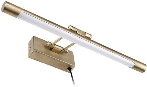 LEONLITE LED Picture Light, Full Metal Artwork Lamp with Swivel Lamp Head, -