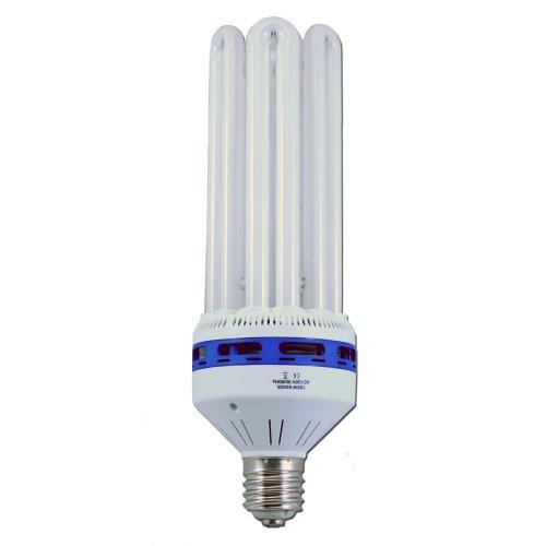 150 Watt CFL 6400K Compact Fluorescent Lamp Veg/Clone Grow Light
