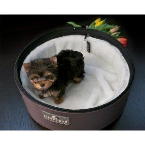 Sleepypod Replacement Bedding w White Ultra Plush Fur (Regular), My Pet Supplies