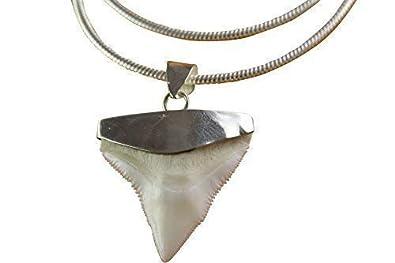 b5ee6cda4e4 myringshop Dent de Requin dent de Requin CHAÎNE en Argent avec Pendentif  Shark Pendentif en Argent