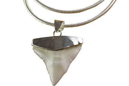 myringshop Haizahn Haifischzahn Silberkette 45 cm lang mit Kette-Anhänger Shark Silberanhänger