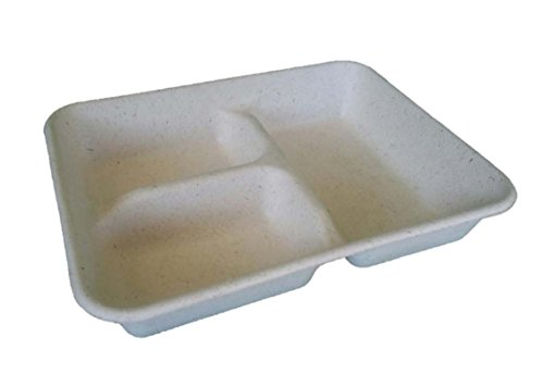 biodegradable tray - 5