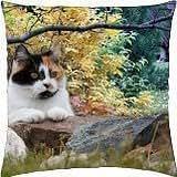 Cute cat - Throw Pillow Cover Case (18