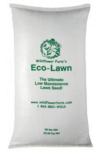 ECO-LAWN Grass Seed Blend Low Maintenance Lawn - 50lb Bag by Eco-Lawn (Image #2)