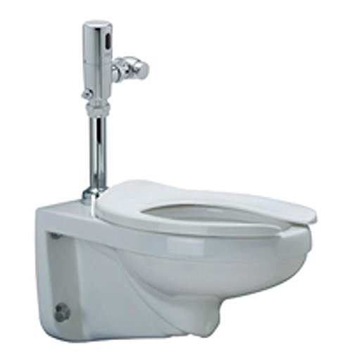 Zurn Z5615.395.00.00 1.1 GPF EcoVantage Wall Mount Toilet System with ZTR Sensor Flush Valve