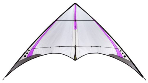Prism 4D Ultralight Stunt Kite, Purple by Prism Kite Technology